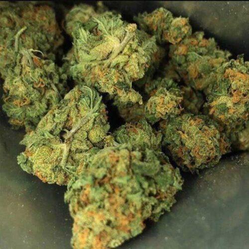 Buy AK 47 Marijuana online